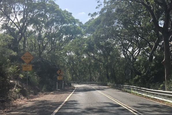 Royal National Park - Open Road